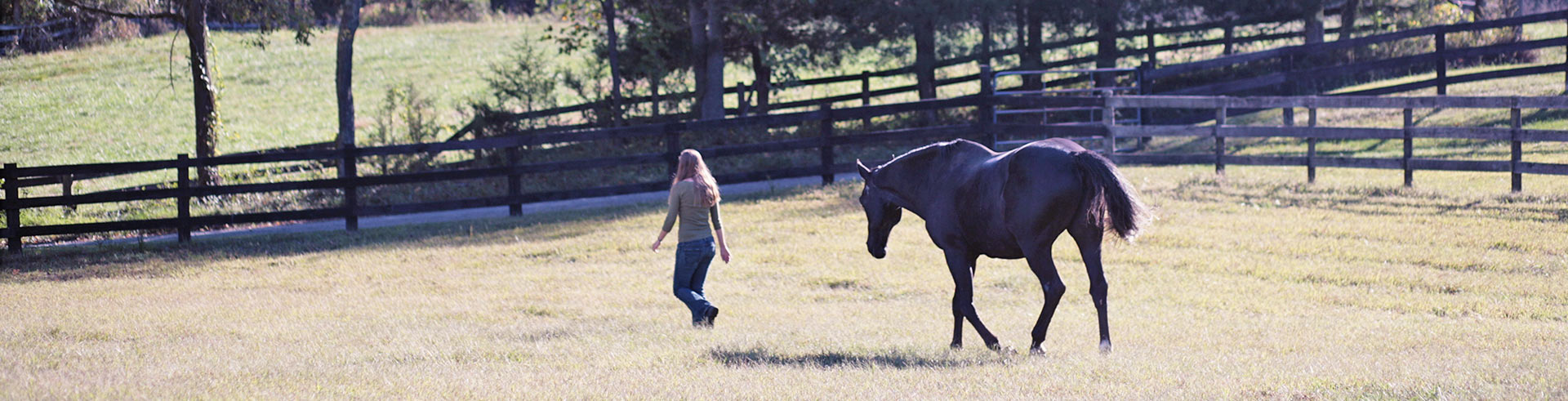 Emily and horse running