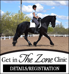 The Zone Clinic